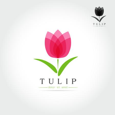 Illustration pour Simple Tulip bud with leaves design for emblem or sign on white background Vector illustration - image libre de droit