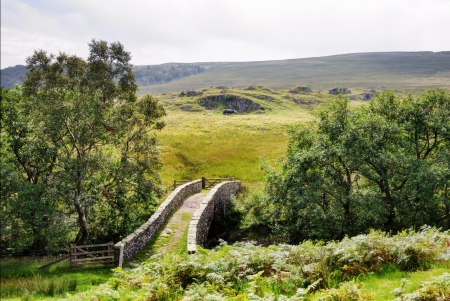 A small packhorse bridge in a moorland setting flanked by trees