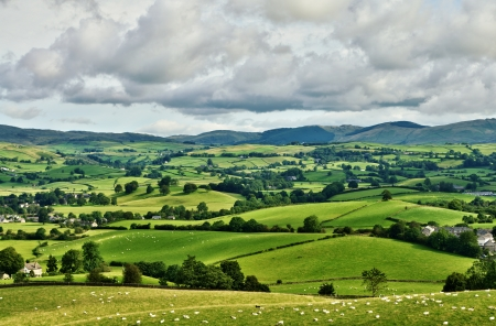 Pastoral scene of lush green English farmland