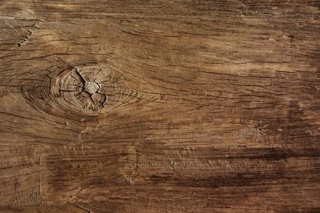 Foto de texture of bark wood use as natural background - Imagen libre de derechos