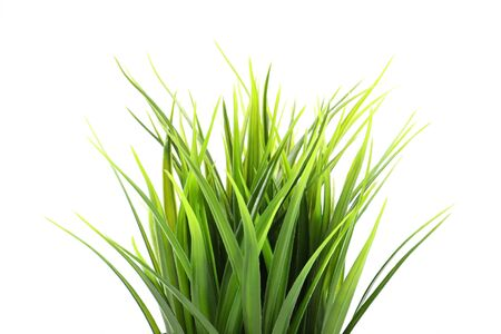 Photo pour Artificial green grass isolated on white background - image libre de droit