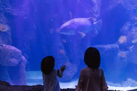 Photo for Asian Little Chinese Sisters watching fishes in the aquarium - Royalty Free Image