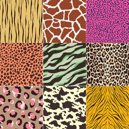 Ilustración de repeated animal skins print set - Imagen libre de derechos