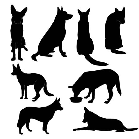 Illustration pour set of silhouettes of big dog in basic poses (sit, lie, profile, stand, front, back, eat), vector isolated on white background - image libre de droit