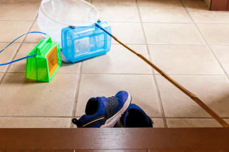 Photo for Insect-removing tools and children's shoes - Royalty Free Image