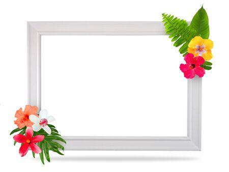 Photo pour Frame material colored with tropical flowers - image libre de droit
