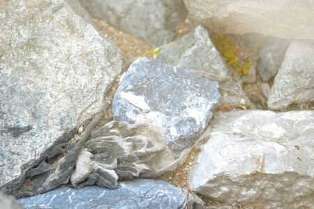 trash in the rock