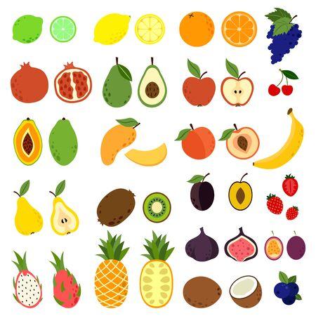 Illustration pour Doodle fruits. Natural tropical fruit, doodles citrus orange and vitamin lemon. Exotic Tropical organic fruit, delicious kitchen food - image libre de droit