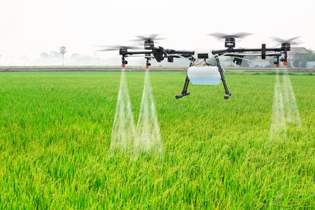 Photo pour Agriculture drone fly to sprayed fertilizer on the rice fields - image libre de droit