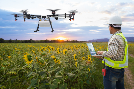 Photo for Technician farmer use wifi computer control agriculture drone on the sunflower field, Smart farm concept - Royalty Free Image