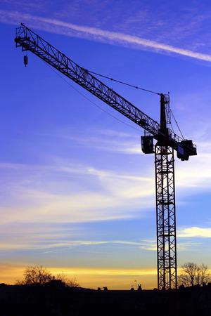 Photo pour Crane silhouette - image libre de droit