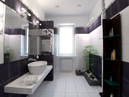 3d rendering black and white bathroom on zen style