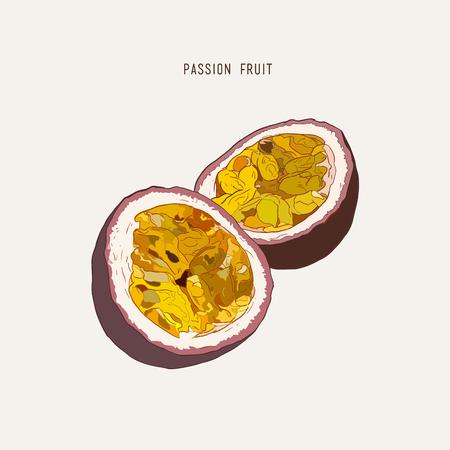 Passion fruit, passion slice. Vector hand drawn illustration