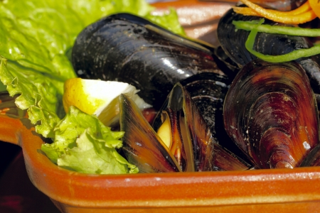 Delicious dish with mussels