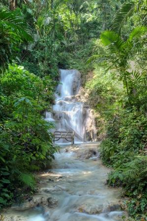 Beautiful waterfall in Ocho Rios, Jamaica