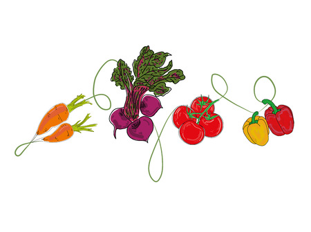 Illustration pour vegetables. Background for your design works. isolated vegetables. Vector illustration. - image libre de droit