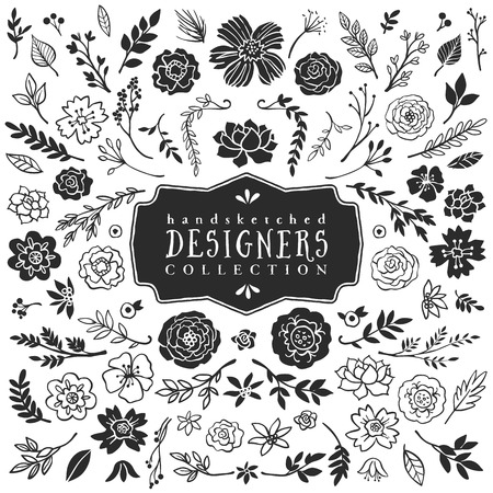 Vintage decorative plants and flowers collection. Hand drawn vector design elements.
