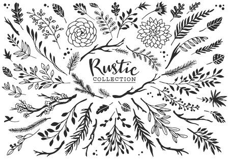 Illustration pour Rustic decorative plants and flowers collection. Hand drawn vintage vector design elements. - image libre de droit