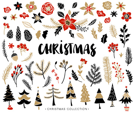 Christmas set of plants with flowers, spruce branches, leaves and berries. Christmas trees. Handwritten modern brush lettering. Hand drawn design elements.