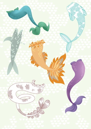 Illustration of different mermaids  tails