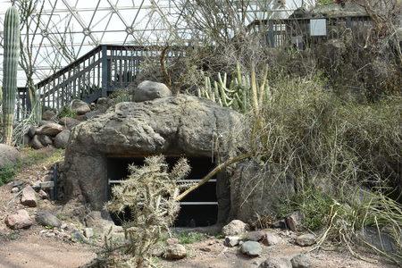 Interior view of the Biosphere 2, Arizona, U.S.A.