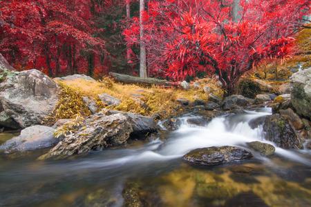 Photo pour Kamphaeng Phet, Khlong Lan waterfall in autumn forest, - image libre de droit