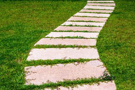 Gardening stone footpath with grass in the garden