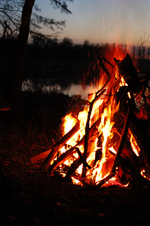 A large bonfire in the dark at night in the forest.