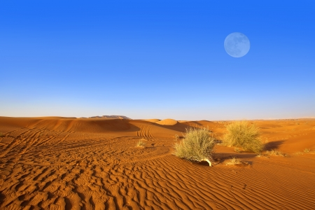 Sand dunes and moon in the Dubai desert