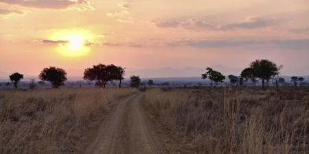 Sunset over the dry African Savannah, Mikumi, Tanzania