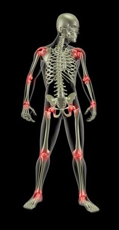 3D render of a medical skeleton with joints highlighted