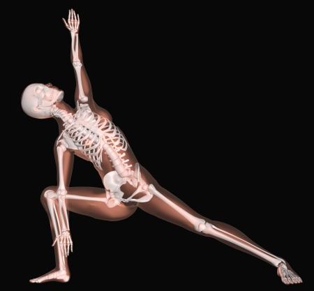 3D render of a female medical skeleton in a yoga position