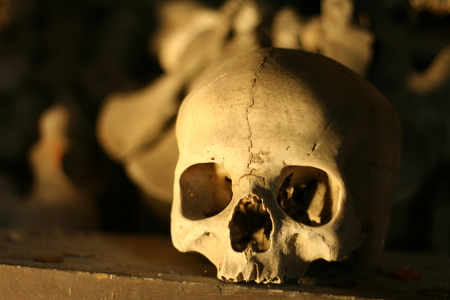 Ancient skull lying in the shadow. Picture from the christian medieval ossuary in Sedlec, Kutna Hora, Czech republic.