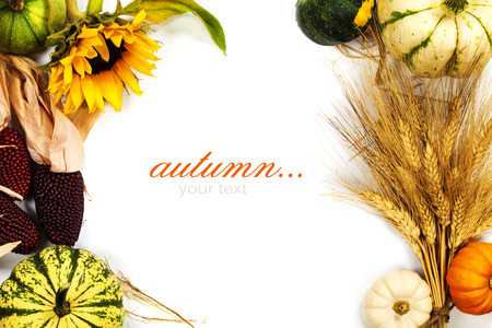 Autumn frame over white. Thanksgiving day, harvesting  or autumn concept (with easy removable sample text)の写真素材