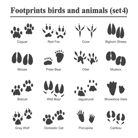 Ilustración de Wildlife animals and birds footprint, animal paw prints vector set. Footprints of variety of animals, illustration of black silhouette footprints. - Imagen libre de derechos