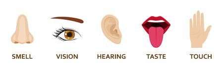 Five human senses icons set. Cartoon design nose, eye, hand, ear and mouth. Vector illustration.