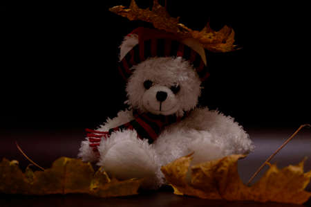 Photo pour White and red teddy bear in a red cap and a scarf with dry leaves and an umbrella - image libre de droit