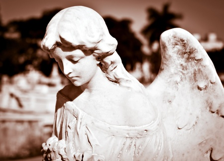 Young female angel in sepia shades with a diffused cemetery background