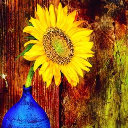 Photo for Sunflower on a blue vase with a grunge rustic wooden background - Royalty Free Image