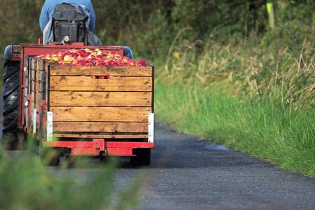 Apfelernte Wagen auf Straße