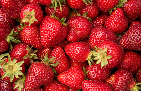 Freshly picked strawberries for healthy living