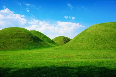 Green hills in summer