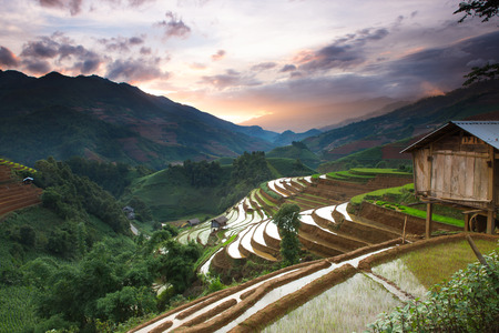 Rice field terraces view on the top mountain Mu Cang Chai , Vietnam.