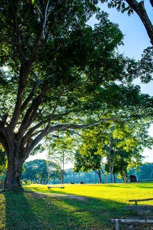 Foto de Camping Yard in Mae Puem National Park, Phayao province. - Imagen libre de derechos