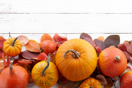 Background of colorful autumn pumpkins and leaves, fall season conceptの写真素材