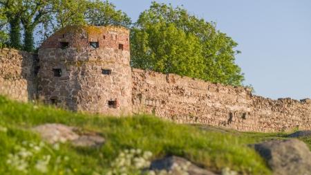 Medeival castle ruins in evening sunlight