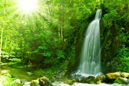nice waterfall through green forest