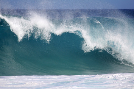 Big wave - North Shore of Oahu Hawaii