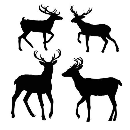 Illustration for deer silhouette, vector, illustration, animal, black, nature - Royalty Free Image