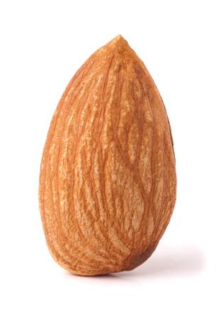 One almond nut isolated on white background close-up macro.